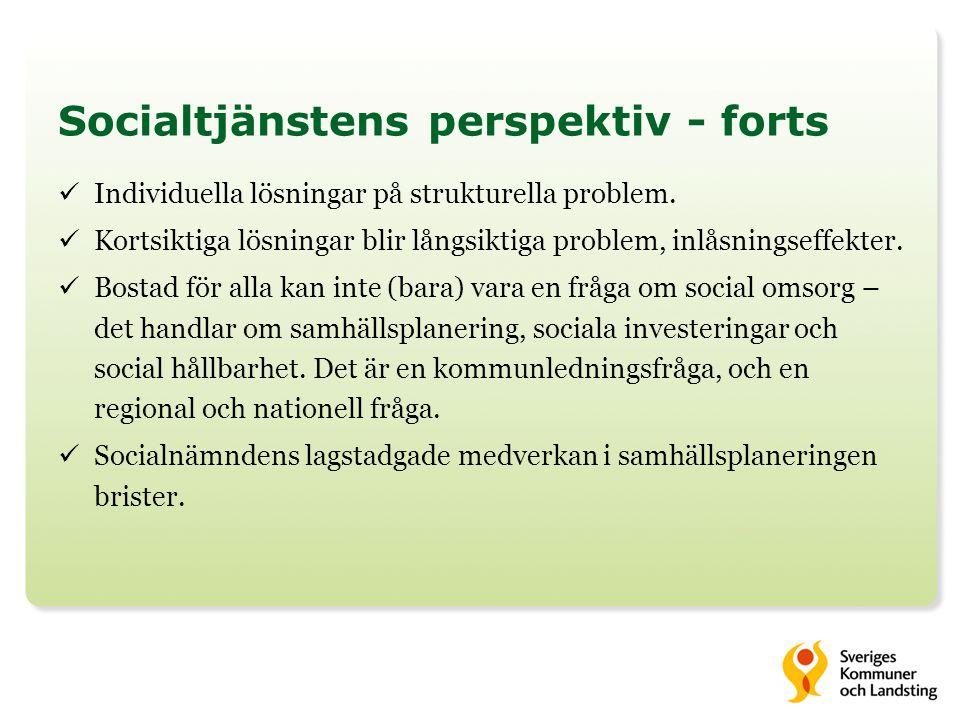 Socialtjänstens perspektiv - forts