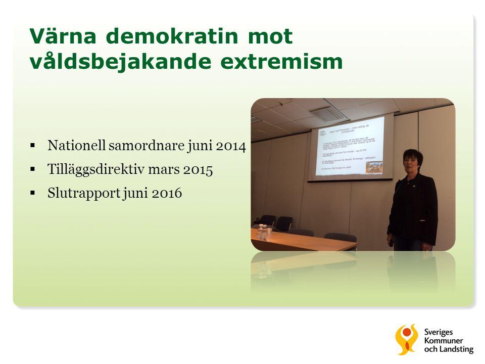 Värna demokratin mot våldsbejakande extremism