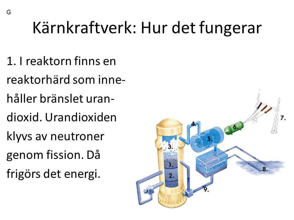 Kärnkraftverk: Hur det fungerar