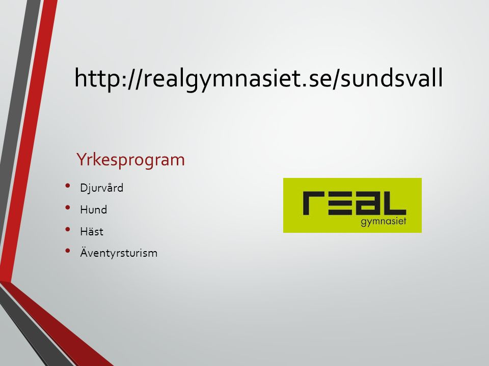 http://realgymnasiet.se/sundsvall Yrkesprogram Djurvård Hund Häst