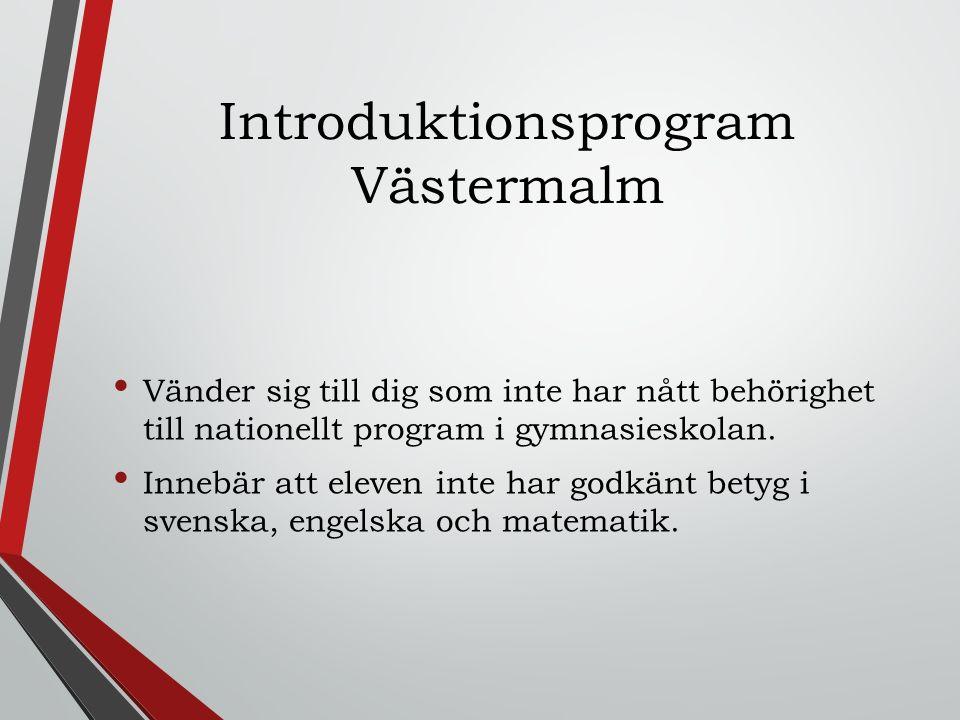 Introduktionsprogram Västermalm
