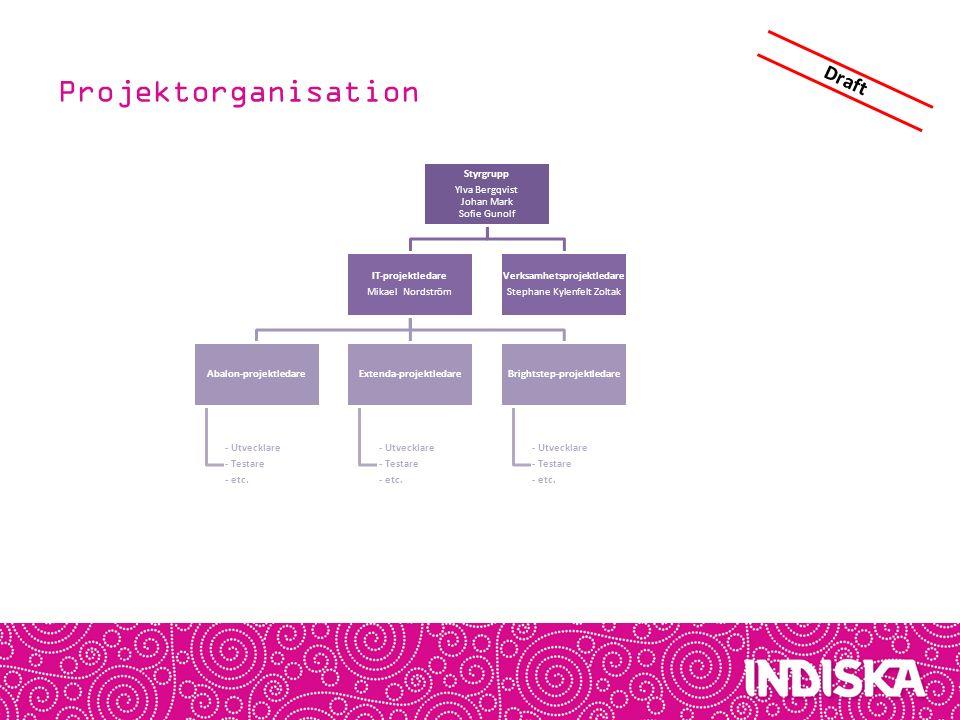 Projektorganisation Draft Styrgrupp