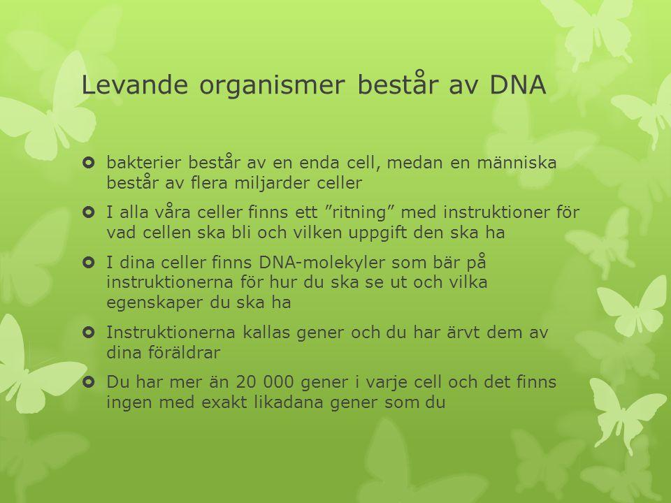 Levande organismer består av DNA