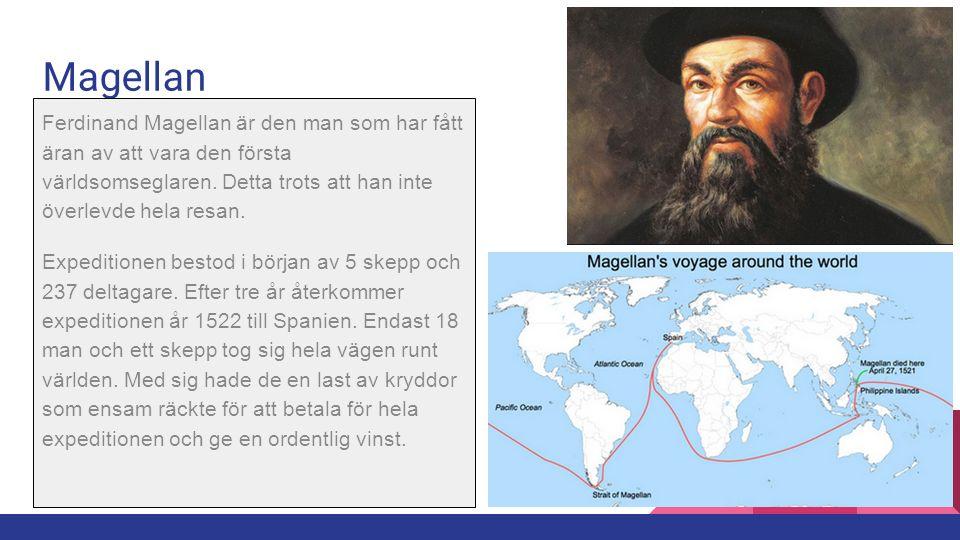 Magellan Ferdinand Magellan är den man som har fått äran av att vara den första världsomseglaren. Detta trots att han inte överlevde hela resan.