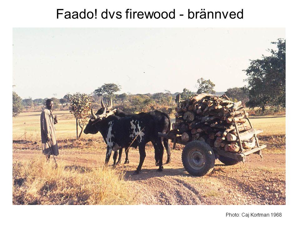 Faado! dvs firewood - brännved