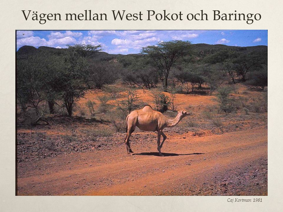 Vägen mellan West Pokot och Baringo