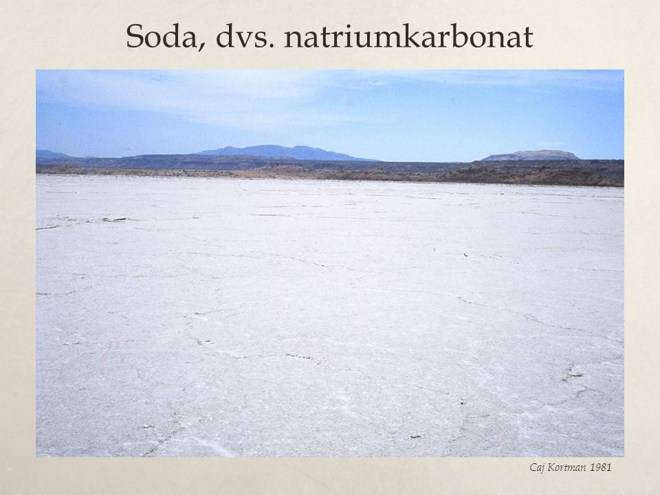 Soda, dvs. natriumkarbonat