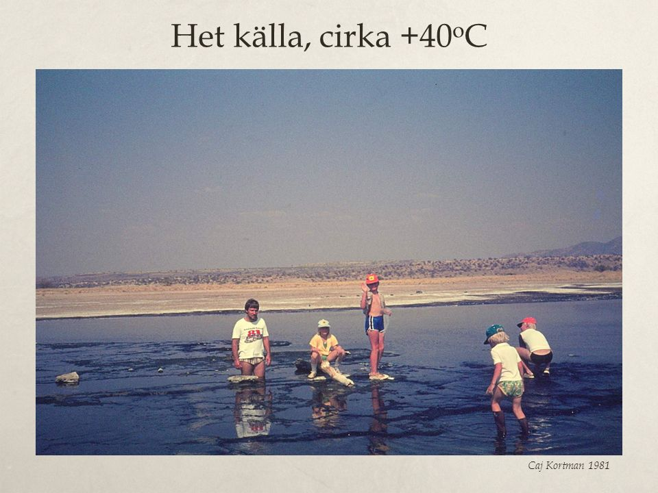 Het källa, cirka +40oC Caj Kortman 1981