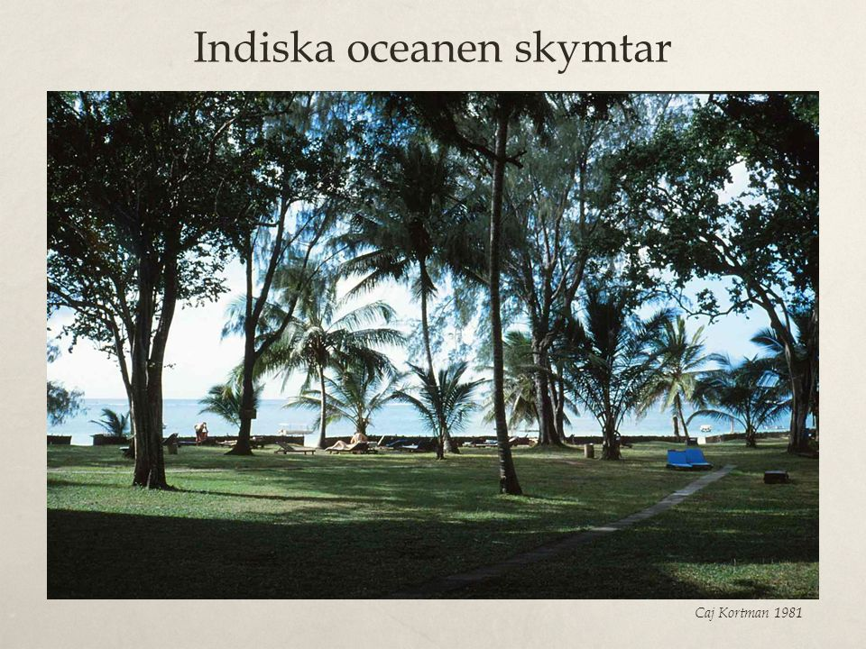 Indiska oceanen skymtar