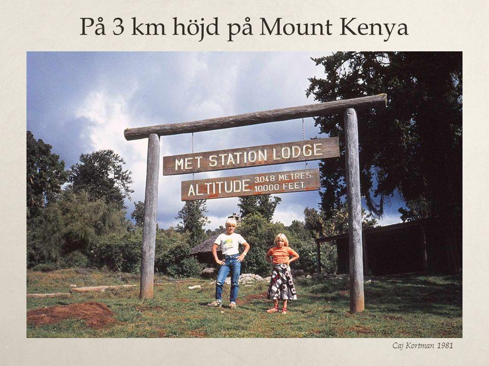 På 3 km höjd på Mount Kenya