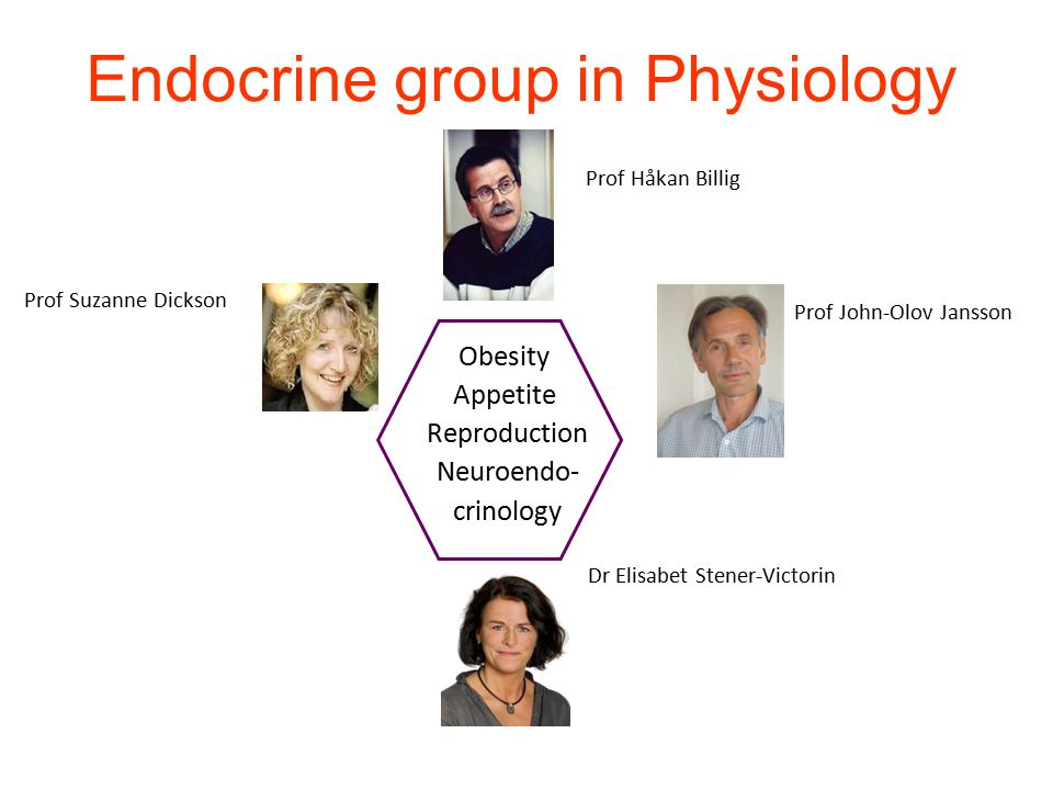 Endocrine group in Physiology