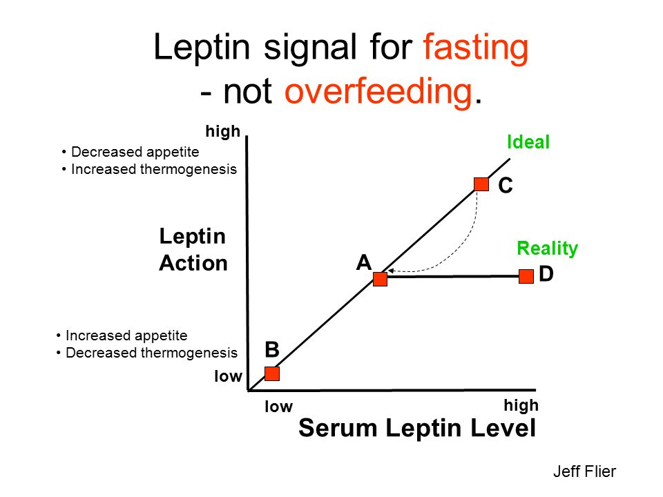 Leptin signal for fasting - not overfeeding.