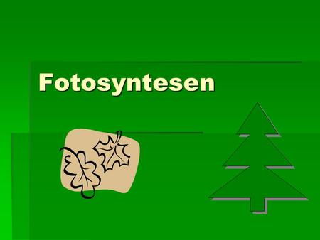 Fotosyntesen.