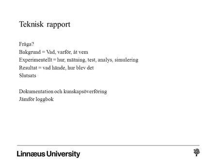 teknisk rapport exempel