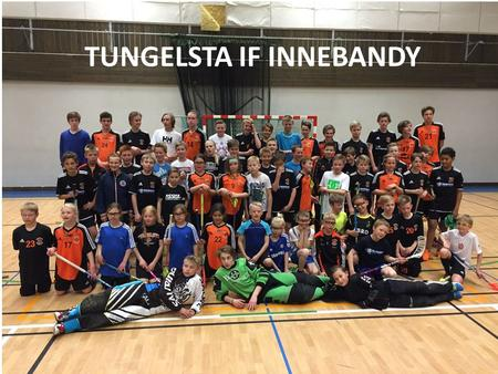 TUNGELSTA IF INNEBANDY. Tungelsta IF Innebandy 2015-08-16.