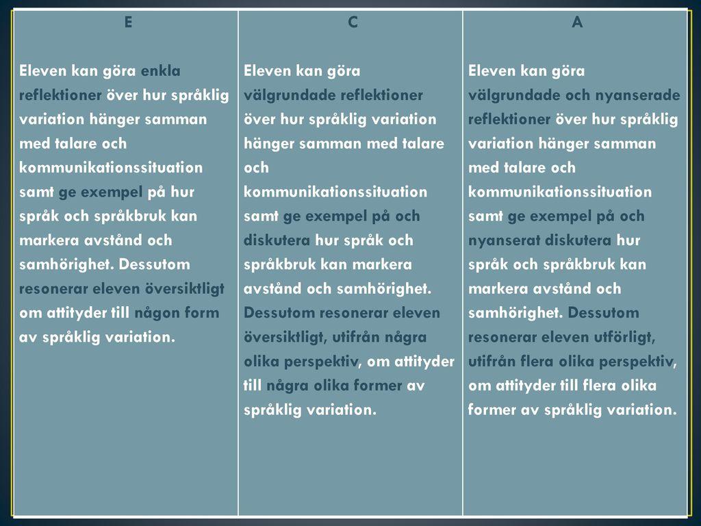 vad är språklig variation