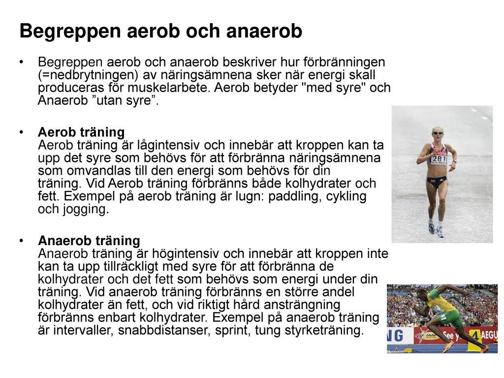 vad är aerob träning