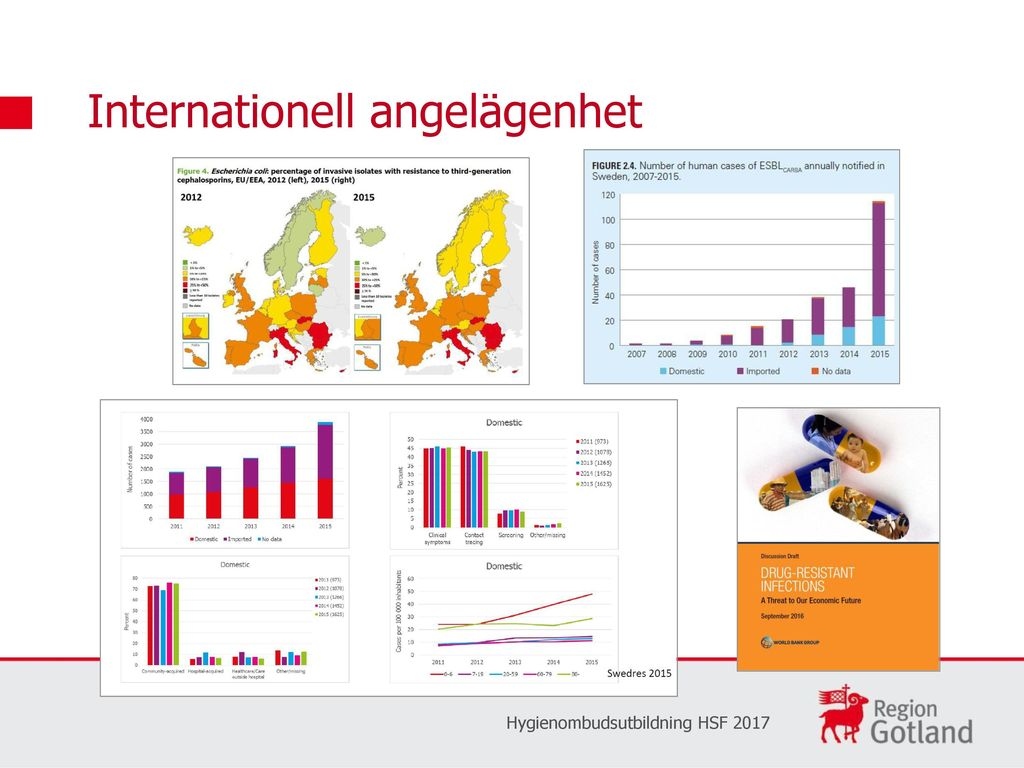 Internationell angelägenhet