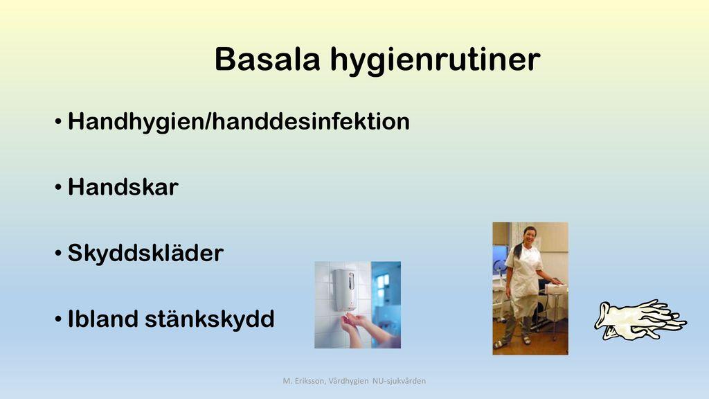 vad är basala hygienrutiner