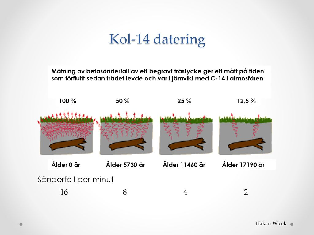 Träd ringar Radiocarbon dating