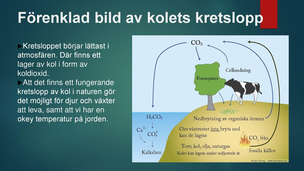 kolets kretslopp förenklat