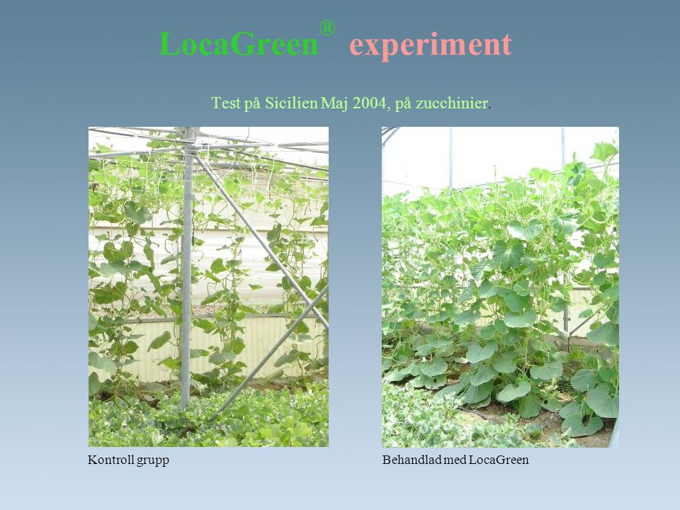 LocaGreen® experiment