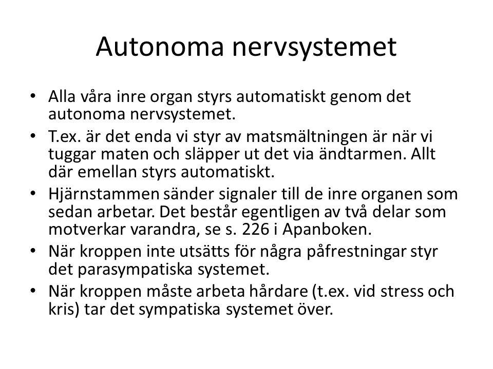 vad är autonoma nervsystemet