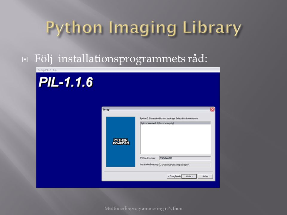 Python Imaging Library