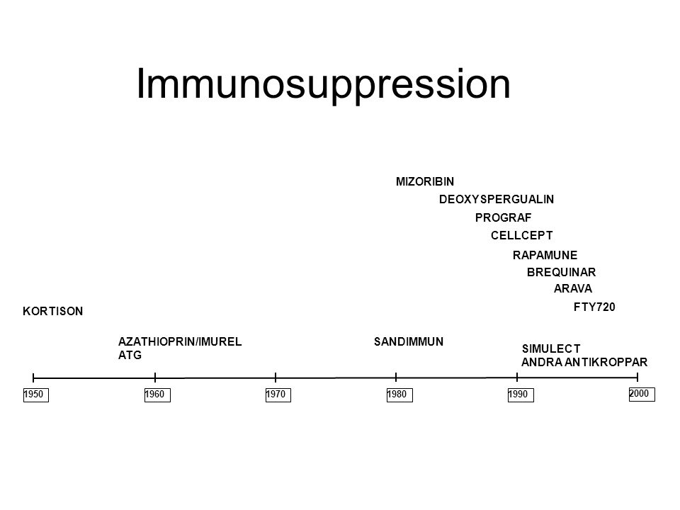 Immunosuppression MIZORIBIN DEOXYSPERGUALIN PROGRAF CELLCEPT