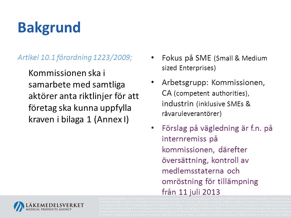 Bakgrund Fokus på SME (Small & Medium sized Enterprises)