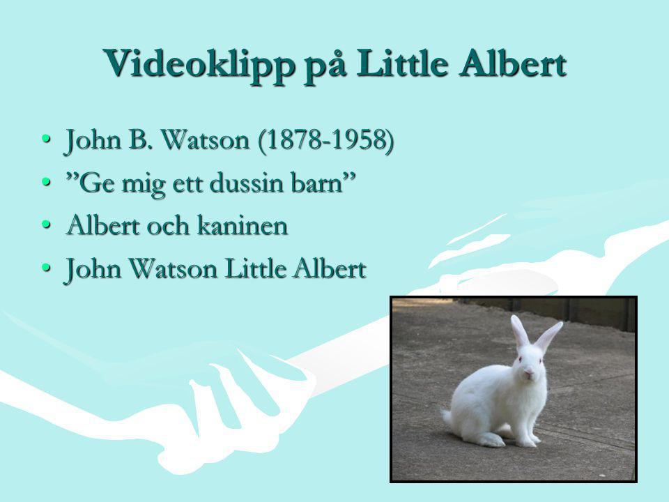Videoklipp på Little Albert