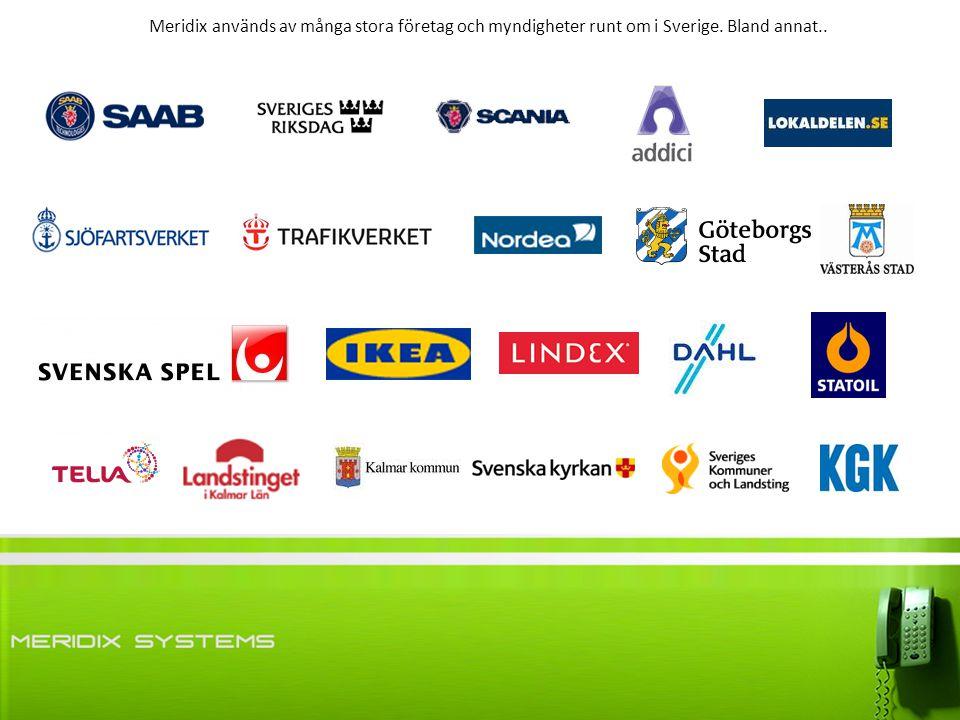 stora företag i sverige