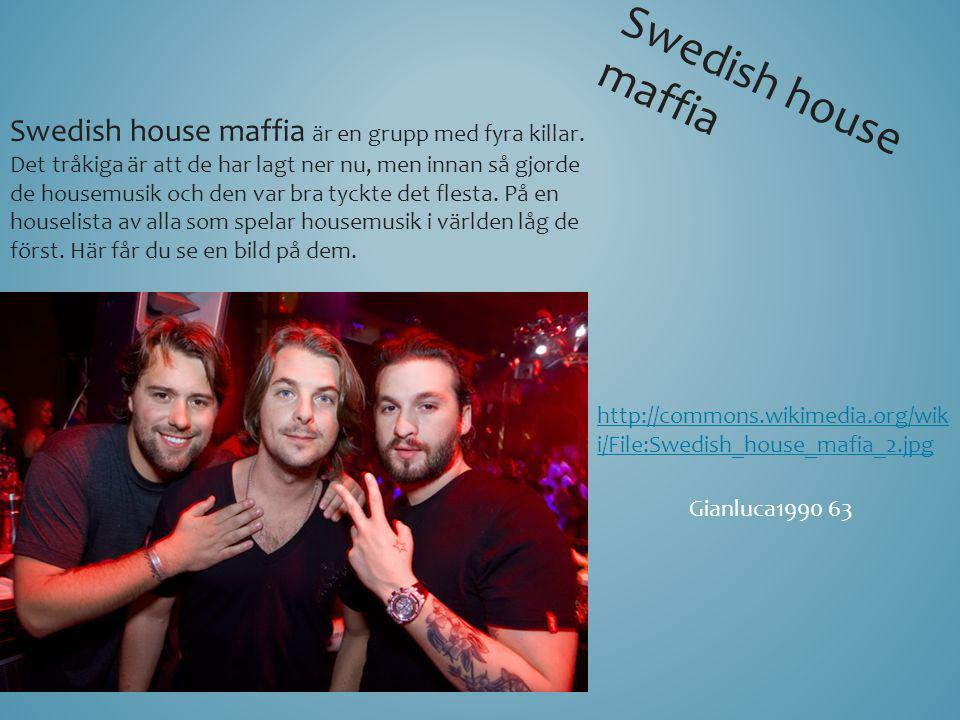 Swedish house maffia