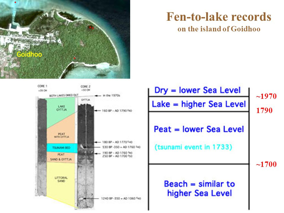 Fen-to-lake records on the island of Goidhoo