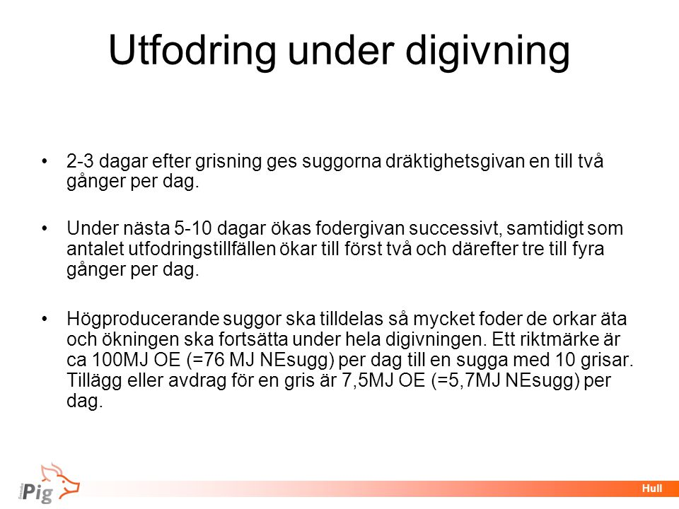 Utfodring under digivning