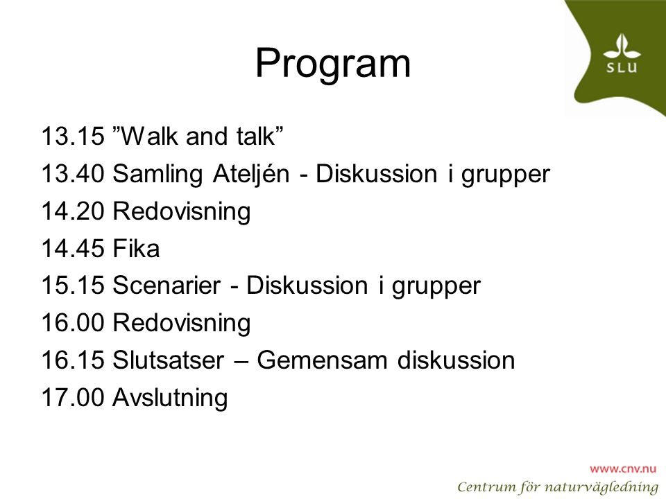 Program Walk and talk
