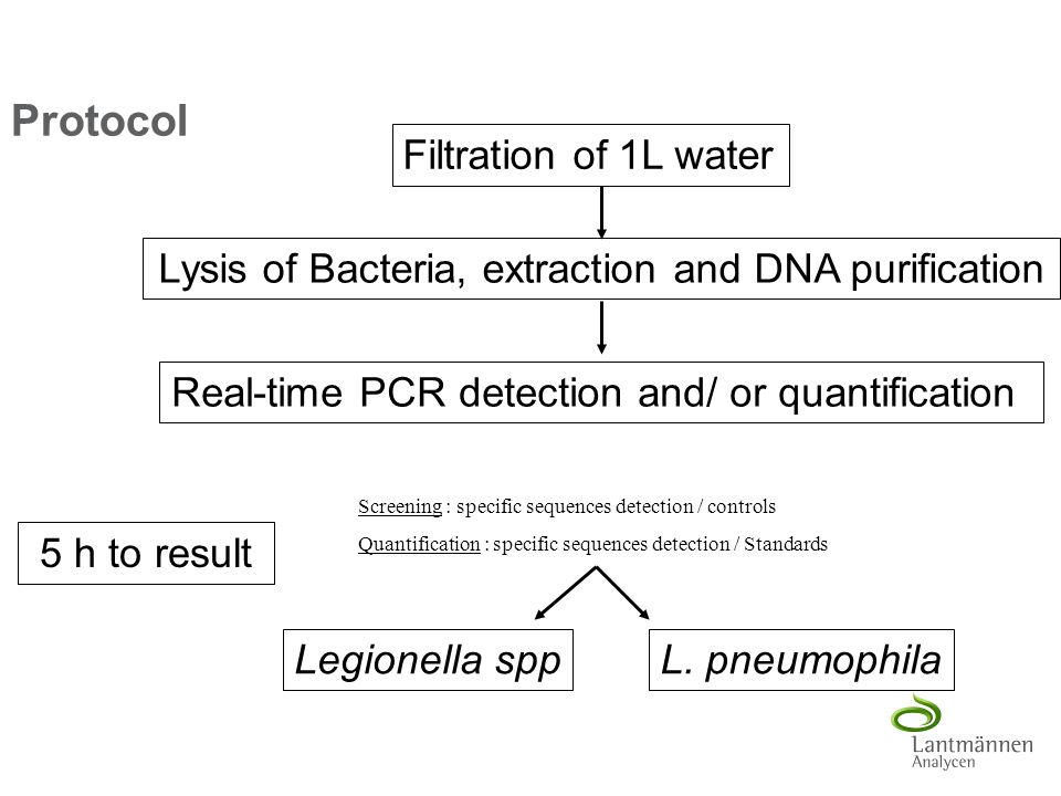 Protocol Filtration of 1L water