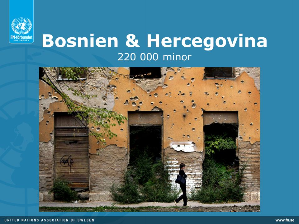 Bosnien & Hercegovina minor