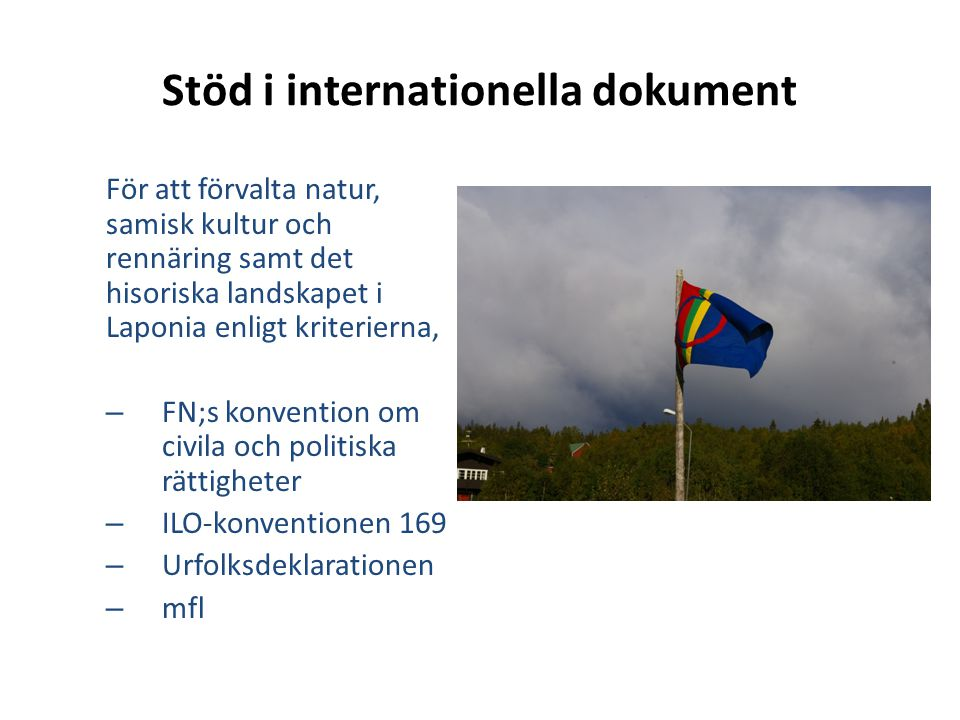 Stöd i internationella dokument