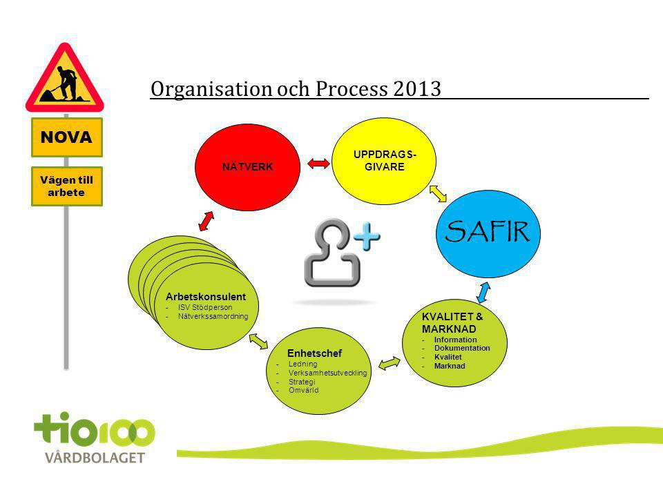 Organisation och Process 2013