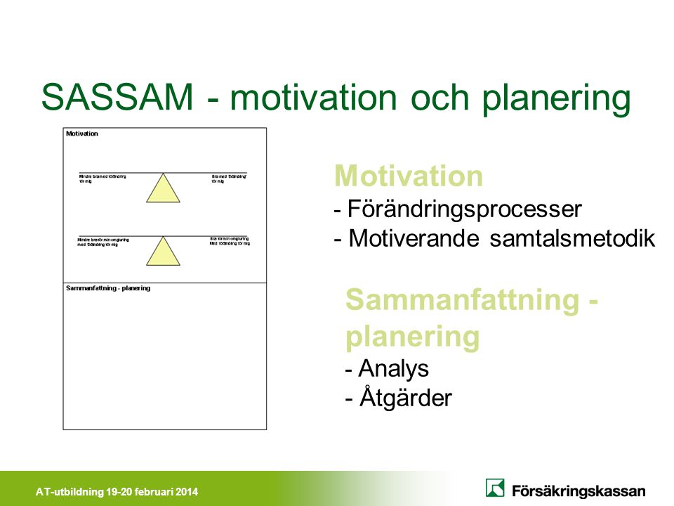 SASSAM - motivation och planering