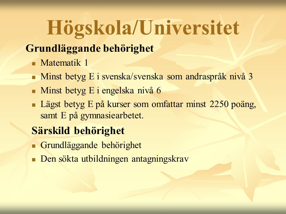 Högskola/Universitet