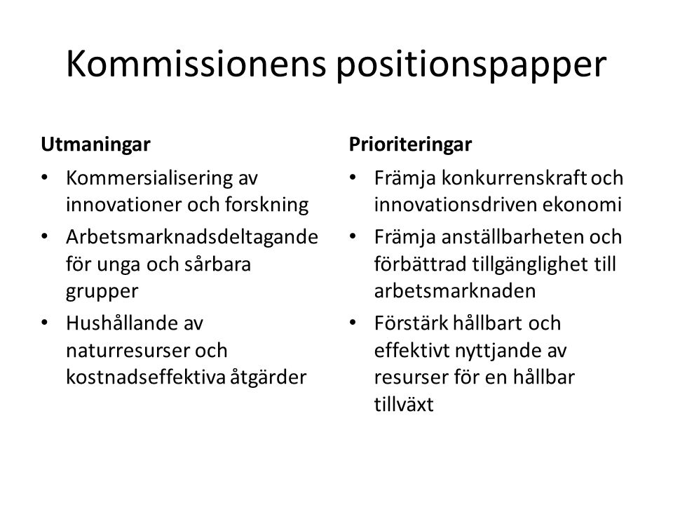 Kommissionens positionspapper