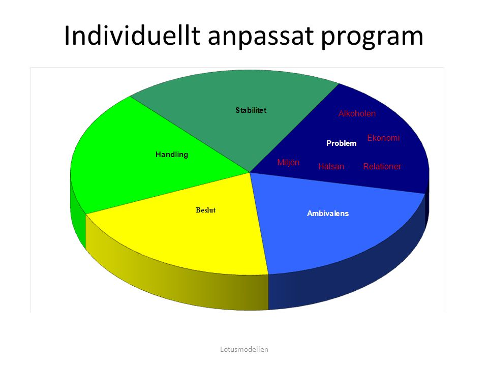Individuellt anpassat program