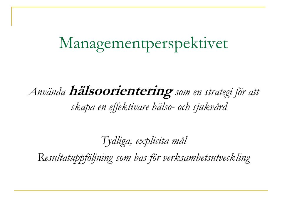 Managementperspektivet