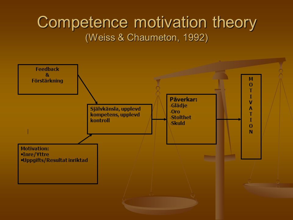Competence motivation theory (Weiss & Chaumeton, 1992)