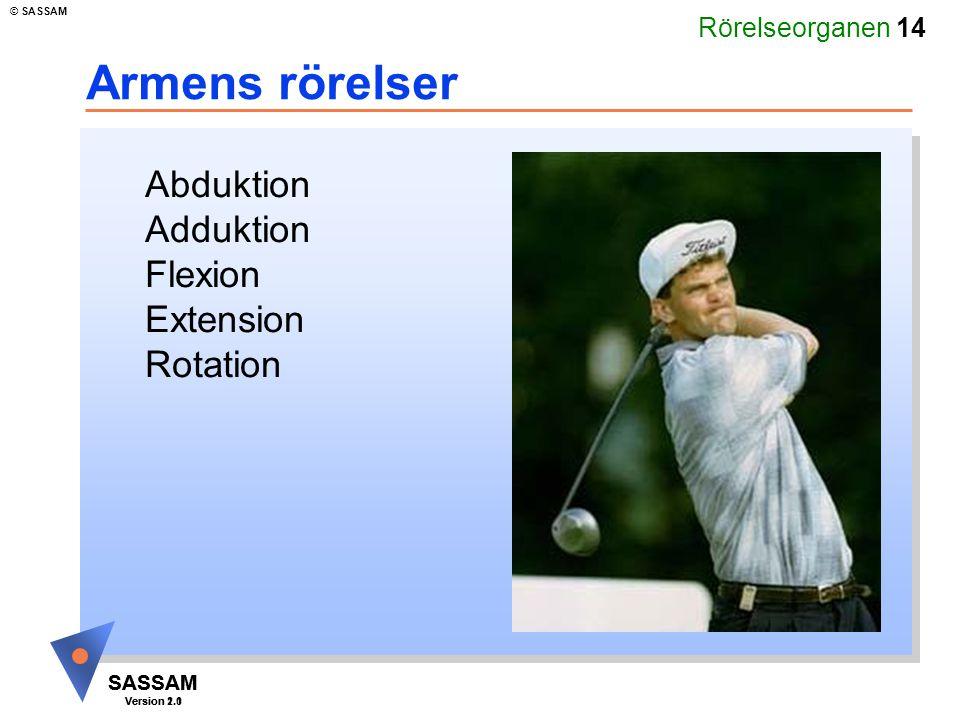Armens rörelser Abduktion Adduktion Flexion Extension Rotation